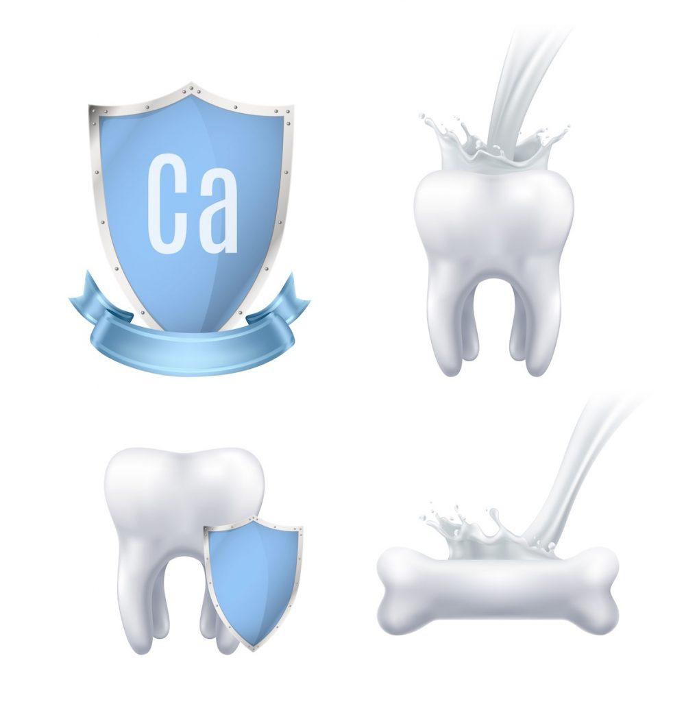 Composición de los dientes